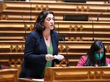 deputada Telma Guerreiro, Assembleia da República
