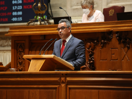 Fernando José, Assembleia da República