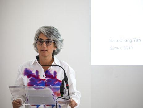 Graça Fonseca, CACE