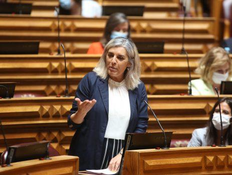 Isabel Rodrigues, Assembleia da República