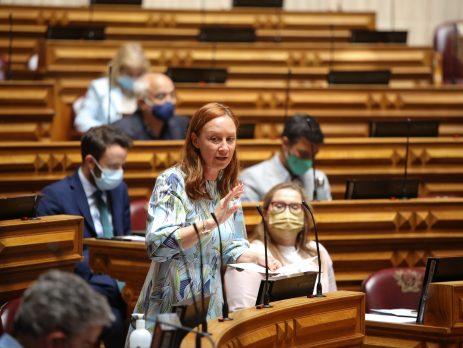 Sofia Araújo, Assembleia da República