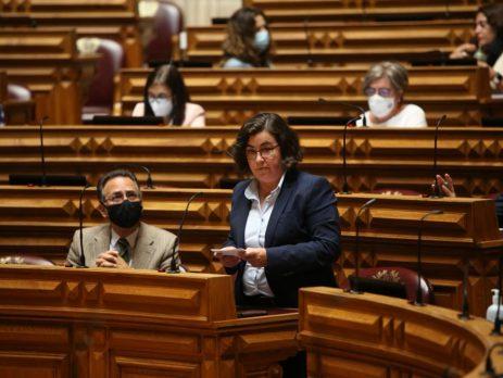 Sara Velez, Assembleia da República