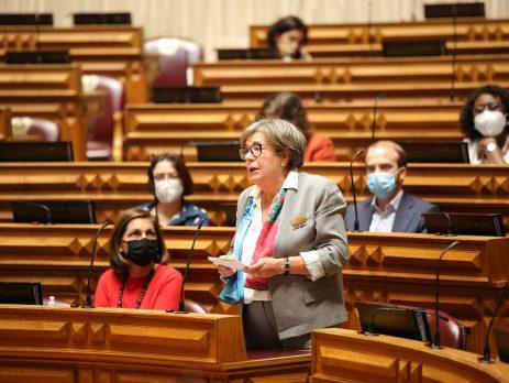 Joaquina Matos, Assembleia da República