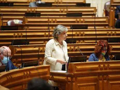 Isabel Oneto, Assembleia da República