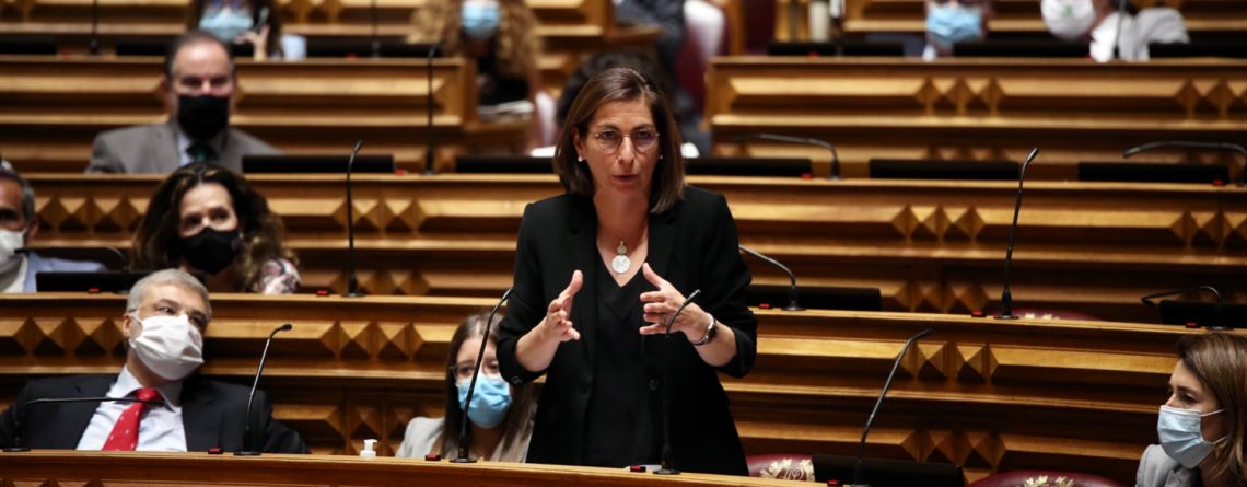 Ana Catarina Mendes, Assembleia da República